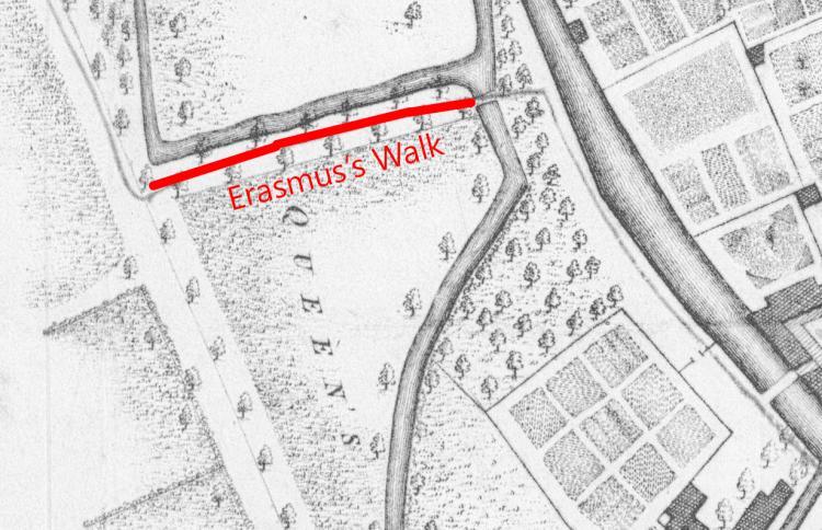 Erasmus's Walk