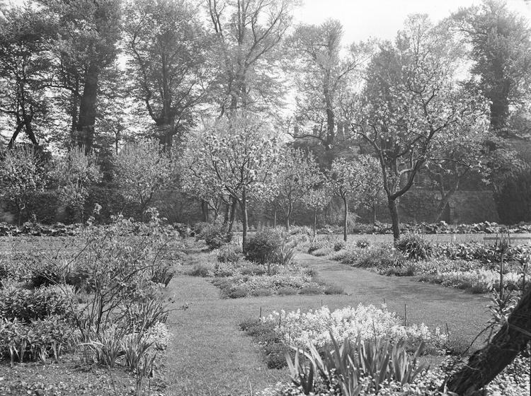 Photo of Fellows Garden