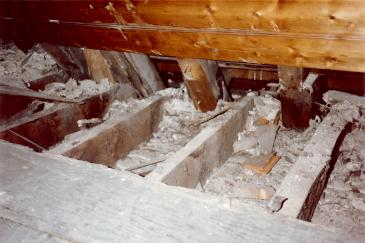 Long Gallery roof rafters