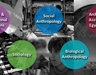 Human, Social and Political Sciences
