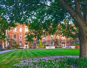 Walnut Tree Court